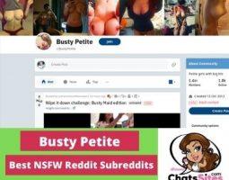 BustyPetite NSFW Reddit